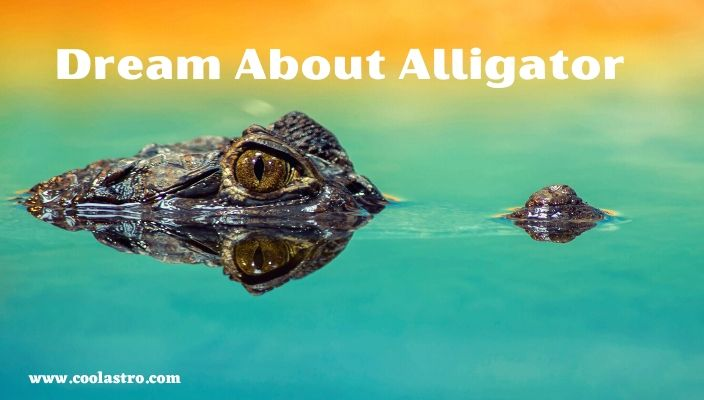 Dream About Alligator Meaning and Interpretation