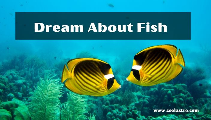 Dreams About Fish Meaning and Interpretation