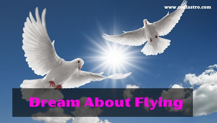 Dream About flying Meaning and Interpretation