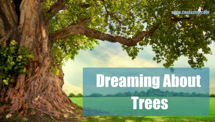 Dream About Trees Meaning and Interpretation