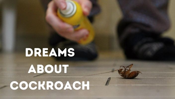 Dream About cockroach meaning and interpretation