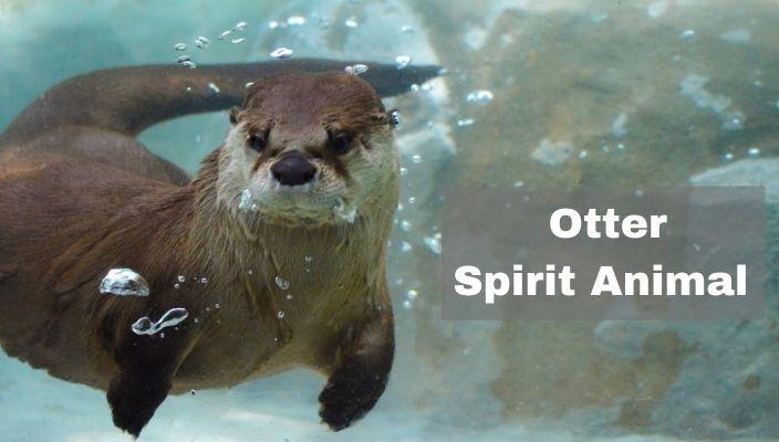 Otter Spirit Animal Meaning