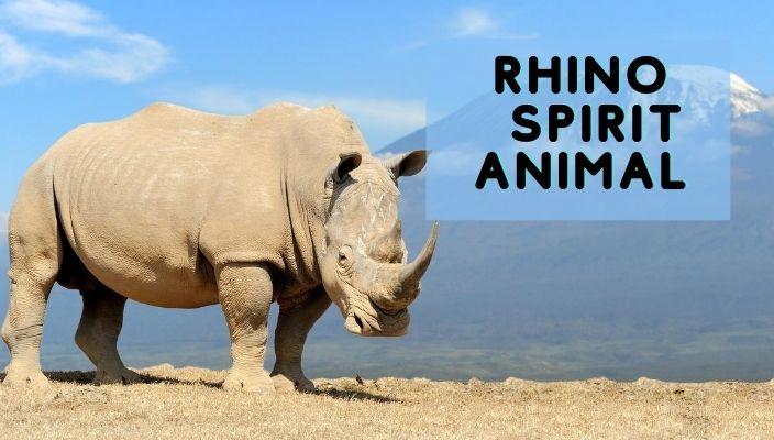 Rhino Spirit Animal Meaning and Symbolism