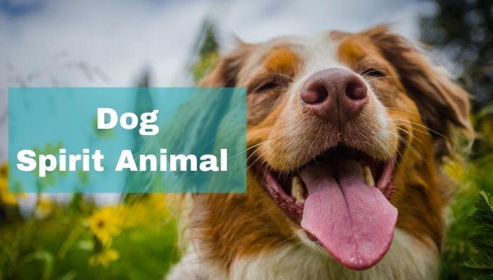 spiritual meaning of Dog spirit Animal