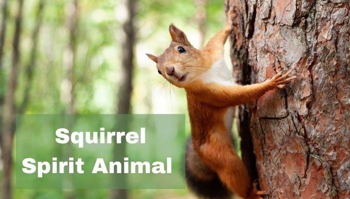 spiritual meaning of Squirrel Spirit Animal