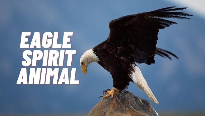 spiritual meaning of eagle spirit animal