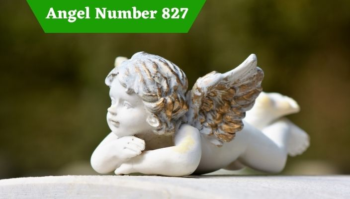 Angel Number 827 Meaning and Symbolism