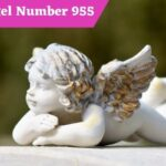 Angel Number 955 Meaning and Symbolism